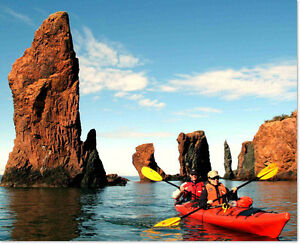 Sea Kayaking Day Tour in Bay of Fundy.  Great Deal!
