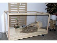 Big Cage (Hamster, Gerbils, Guinea Pigs) Living World Green Eco Habitat, pet friendly, demounted