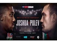 2 x Anthony Joshua V Kubrat Pulev Boxing Tickets - Cardiff