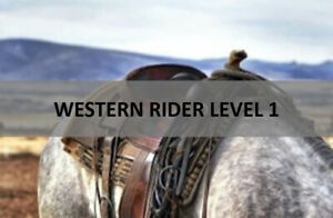 HORSEBACK RIDING LESSONS-ONLINE