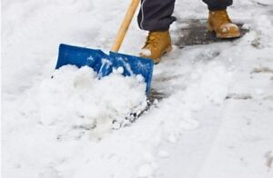Snow Shoveler In Guelph Service Rates Below