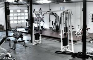 Showtyme Fitness - Personal Training for Results! London Ontario image 3