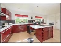 Red gloss kitchen with integrated appliances