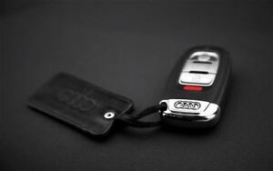 Audi and Bentley Remote Starters Plug and Play!