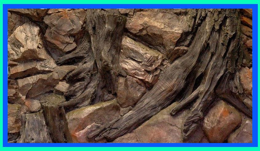 Aquarium 3 D Rückwand Aquariumrückwand Wurzel Felsen 50x30cm bis 200x60cm