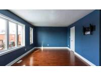 Painter and decorator | laminate and handyman
