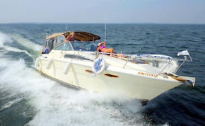 Updated 1986 SEARAY 300 NEW PRICE