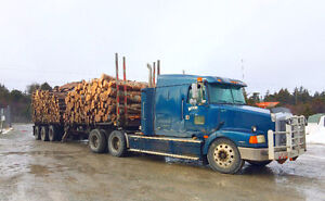 Firewood Factory: Reliable Delivery of Birch & Spruce St. John's Newfoundland image 8