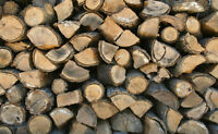Looking for an Honest and Reliable Firewood Vendor
