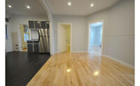 6 ½, 4br,Renovated Fancy apartment in Heart of Plateau in May