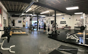 Showtyme Fitness - Personal Training for Results! London Ontario image 9