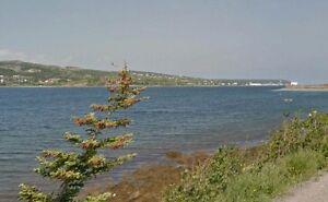 154 Southside Rd - Harbour Grace, NL - MLS# 1155293 St. John's Newfoundland image 2