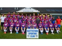 Players wanted!!! Battyeford Ladies Open Age Football (16+, Mirfield, W Yorks)