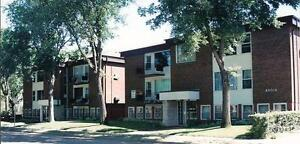 LARGE 1 BEDROOM - 505 CLARENCE AVE. S. (UNIVERSITY)