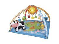 Vtech farm yard babies play mat