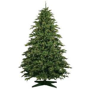 CHRISTMAS BARCANA SPRUCE TREE  6 1/2'  TALL