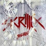 Skrillex CD