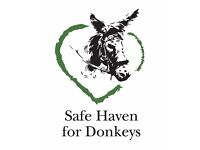 Mid Sussex Friends for Safe Haven for Donkeys (Charity No. 1083468)