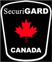 Online Security Guard Training