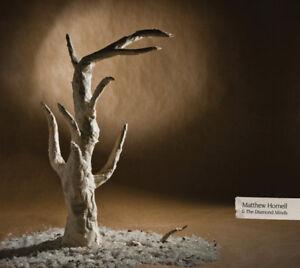 Matthew Hornell &  Diamond Minds cd-Great condition + bonus cd