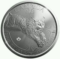 2017 Canadian Lynx 1oz Silver Coin 1 Oncia Lince Canada Puro Argento 999,9 -  - ebay.it