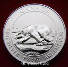 Silver Canadian Coin Mint