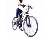 Brand New Electric Bike Go Go Sports