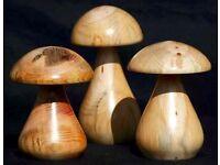 Turned Mushrooms