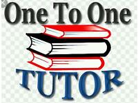 One to one private tutor available for primary and secondary pupils specialising in transfer tuition