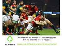 Wales vs South Africa - Autumn Internationals 2017 -- Read the ad description before replying!!