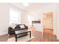 1 bed room flat to rent, sciences, edinburgh, available 5th November