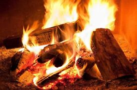 Firewood logs for sale sold per trailer load