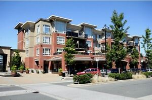 Condo for rent in South Surrey–Watermark Bldg -Avail July1,2018