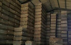Large wooden Apple box/crates/storage/logs/shop fittings/garden beds £10 each