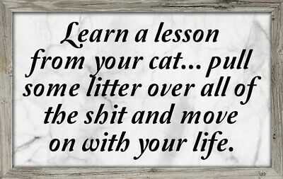 (Lesson From Cat) sign,plaque,gift,animals,poop,learn,kitten,life,wall decor Cat Wall Plaque