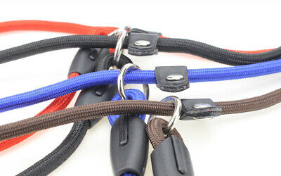 Nylon Rope Slip Dog Lead 5ft Pet Collar Training Show Leash Red Black Blue -