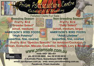 Parrots, Food & Husbandry Equipment  Carwoola Queanbeyan Area Preview