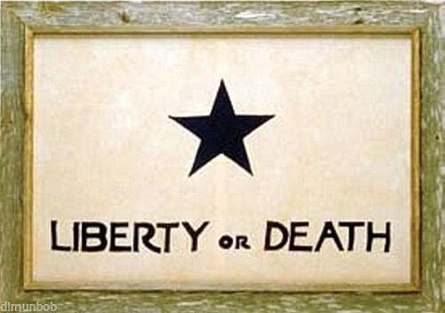 "Texas Troutman Framed Barnwood Flag 20""x28"""