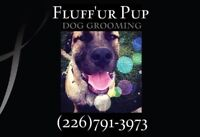 FLUFF'UR PUP dog grooming