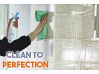 Pristine Cleaning Offers a professional trusting friendly cleaning service