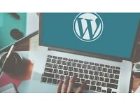 Will Create a Professional WordPress Website for £99