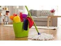 Domestic Cleaning: kitchens, ovens, bathrooms, windows, washing, vaacuming.....