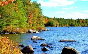25 Acre Lakefront Land for Sale