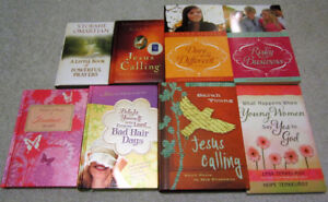Christian youth novels