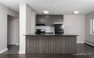 January FREE! February-half month! 2 bedroom brand new apartment