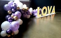 Balloon décor, face painting, caricatures, airbrush, fun food
