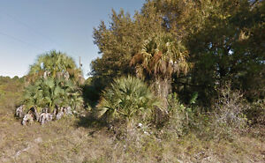 Cheap Residential Land For Sale In Lehigh Acres, Florida