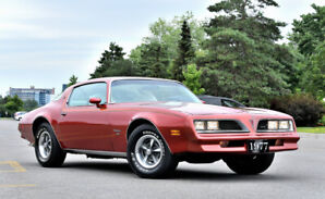 1977 Pontiac Firebird Esprit All original - MIGHT TRADE READ
