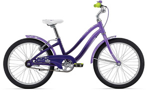"Girls Bike - 20"" frame"