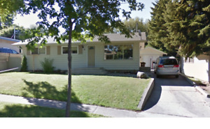 Newly Renovated Single Family Home in Braeside